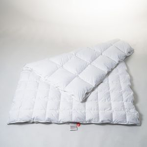 4-Seasons Goose Premium 160 x 210