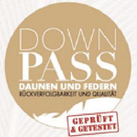 Down Pass Logo